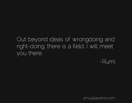 right-wrong-rumi-amyjalapeno