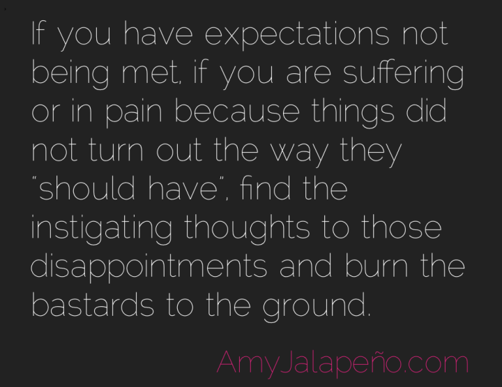 expectations-suffering-liberation-amyjalapeno
