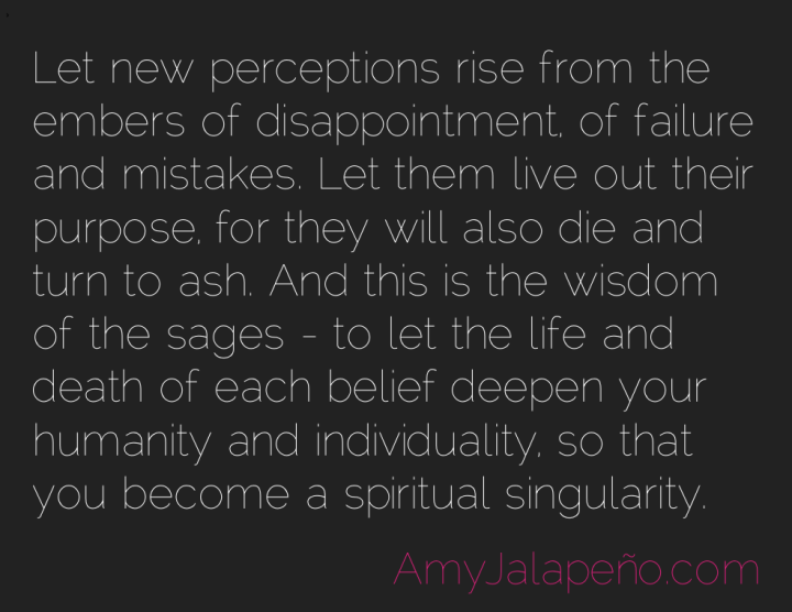 perceptions-sage-purpose-amyjalapeno