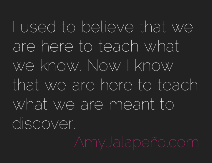 discovery-teach-learn-amyjalapeno