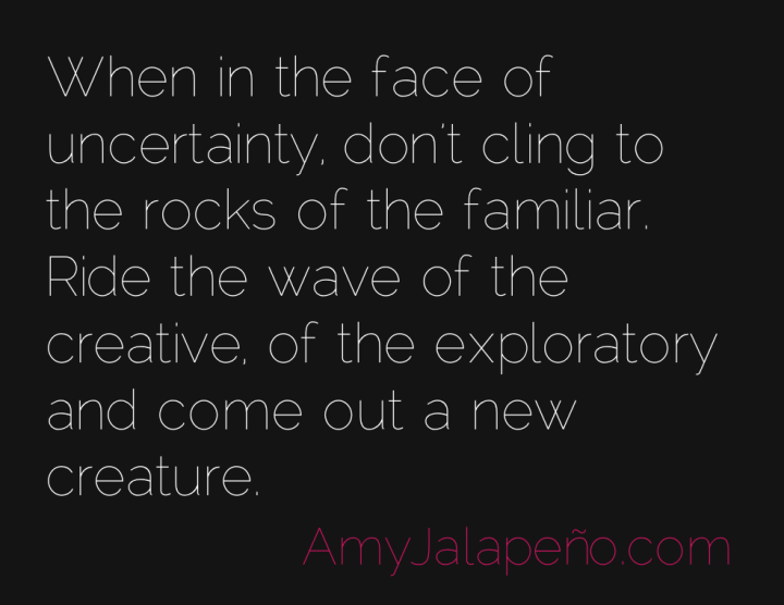 uncertainty-creative-paradigm-amyjalapeno