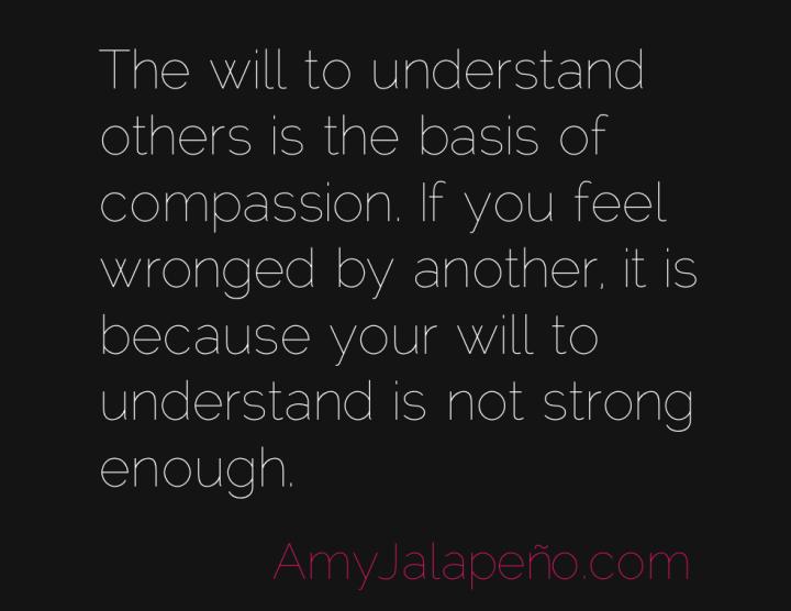 understanding-compassion-victim-amyjalapeno