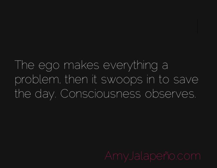 ego-problem-consciousness-amyjalapeno
