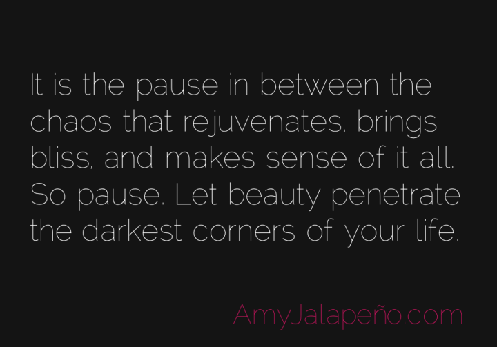 beauty-pause-presence-bliss-amyjalapeno-2