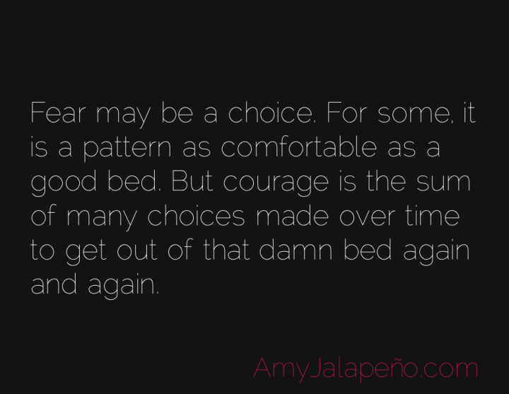 courage-fear-persistence-amyjalapeno