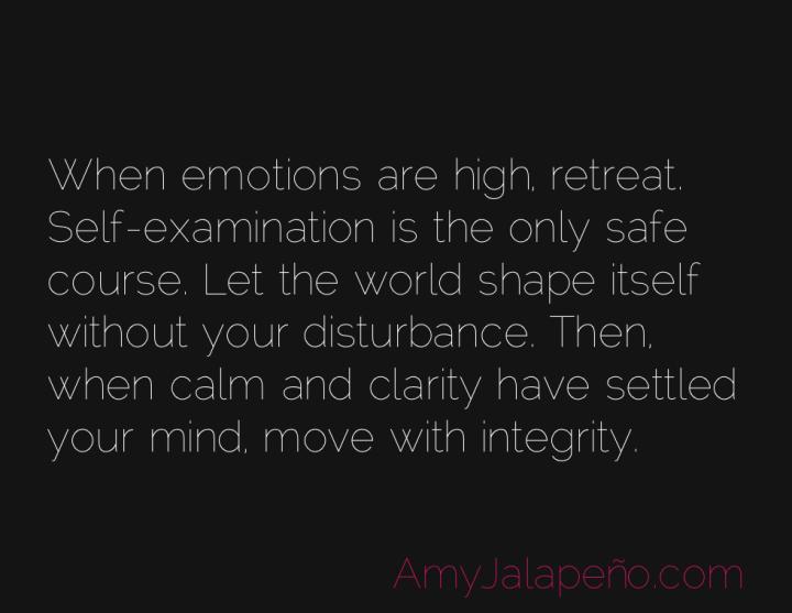 emotions-calm-integrity-amyjalapeno