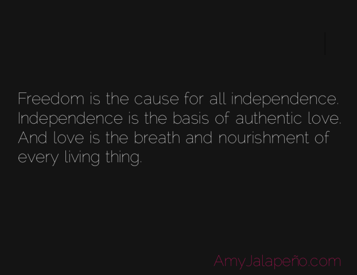 freedom-independence-love-amyjalapeno