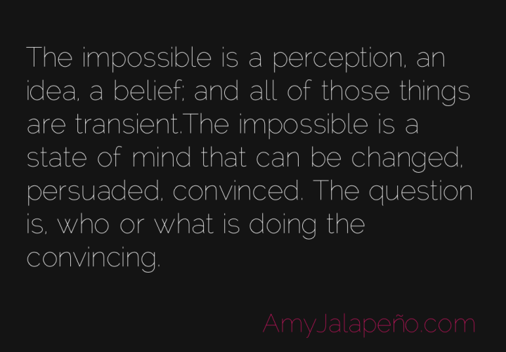 impossible-belief-perception-amyjalapeno