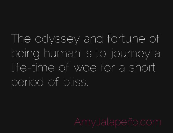 odyssey-humanity-bliss-amyjalapeno
