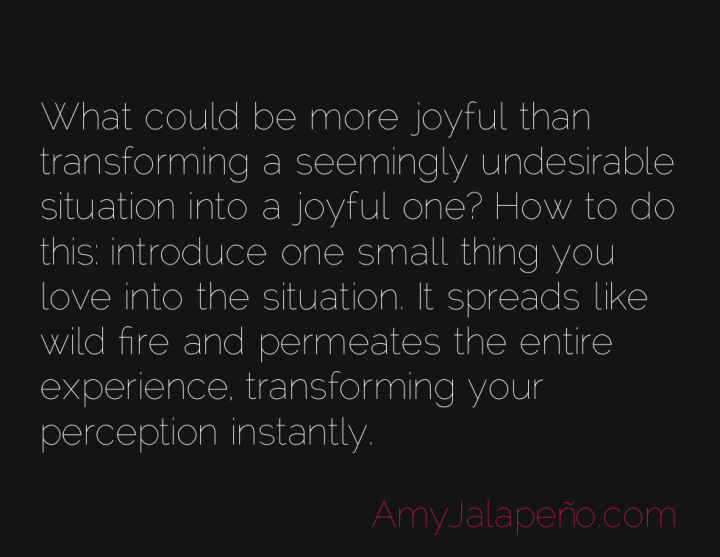 joy-perception-paradigm-amyjalapeno