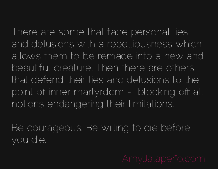 courage-limitation-perception-amyjalapeno