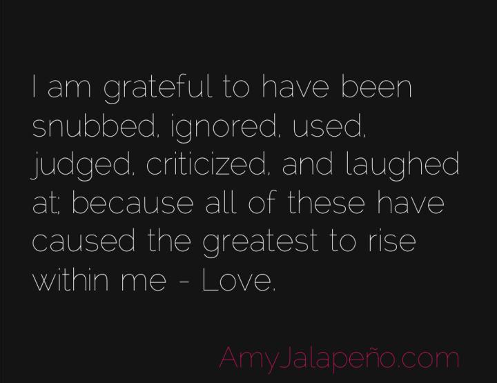 gratitude-love-struggle-amyjalapeno