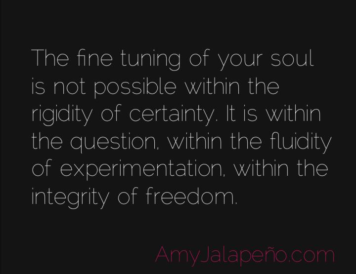 integrity-freedom-soul-amyjalapeno
