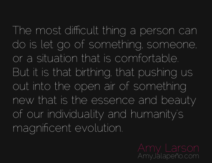 evolution-comfort-risk-individuality-amyjalapeno