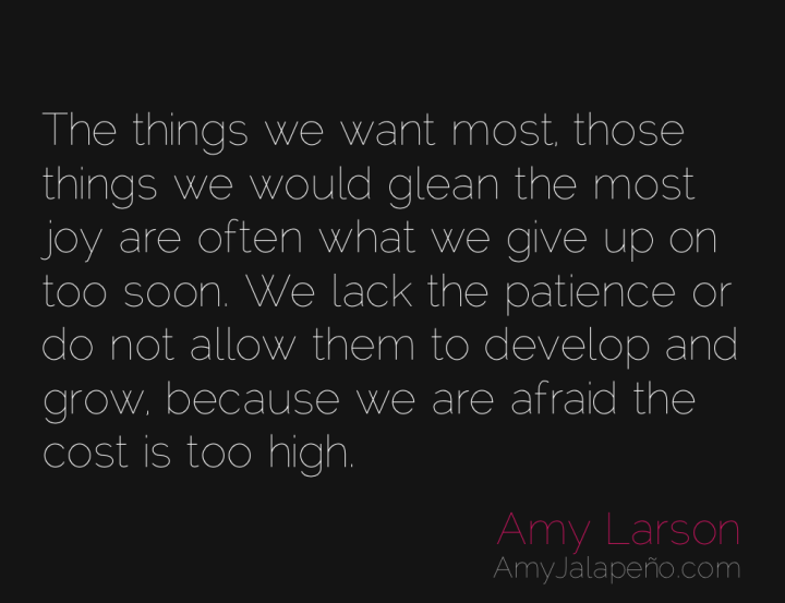 fear-patience-joy-amyjalapeno