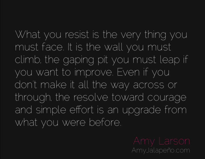 resistance-courage-choice-amyjalapeno