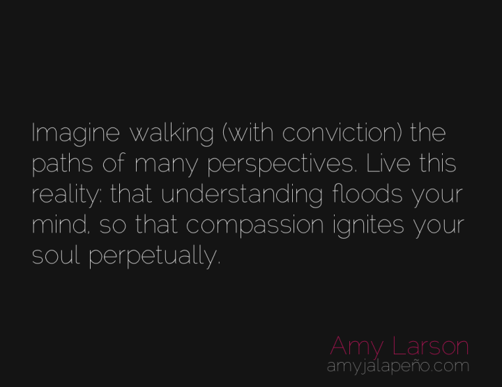 compassion-understanding-perspectives-roles-amyjalapeno