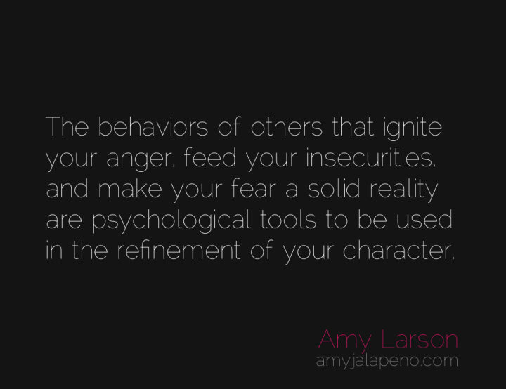 character-fear-insecurity-anger-amyjalapeno