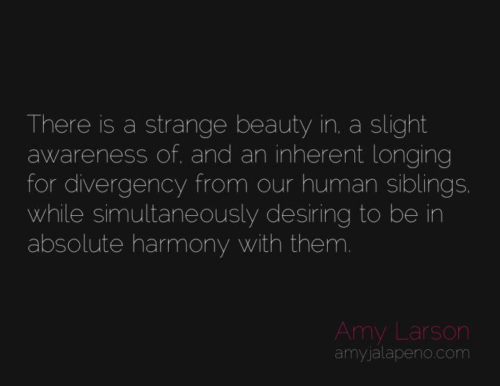 humanity-harmony-conflict-understanding-amyjalapeno