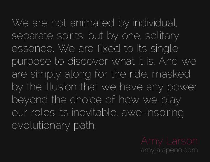 purpose-choice-evolution-illusion-amyjalapeno