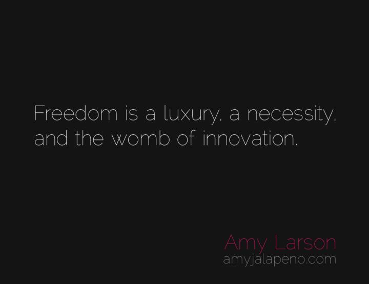 freedom-innovation-creativity-amyjalapeno