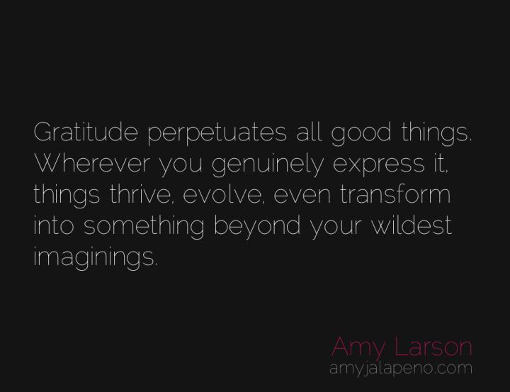 gratitude-transformation-change-evolve-amyjalapeno
