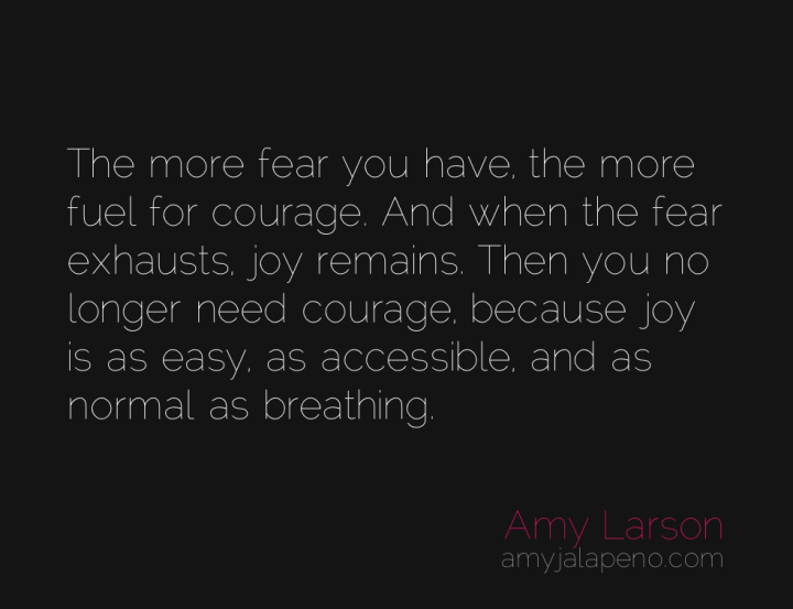 courage-fear-joy-amyjalapeno