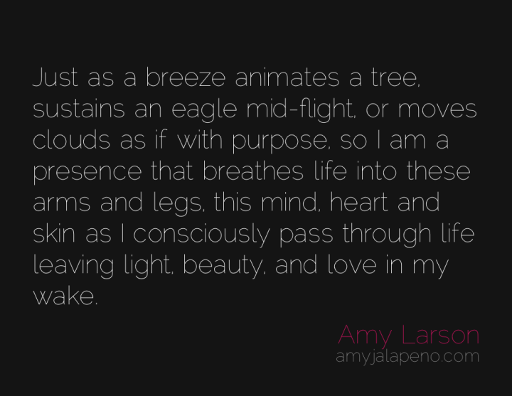 presence-awareness-purpose-conscious-amyjalapeno