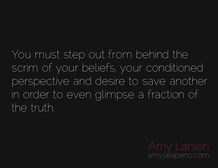 belief-truth-desire-perspective-amyjalapeno