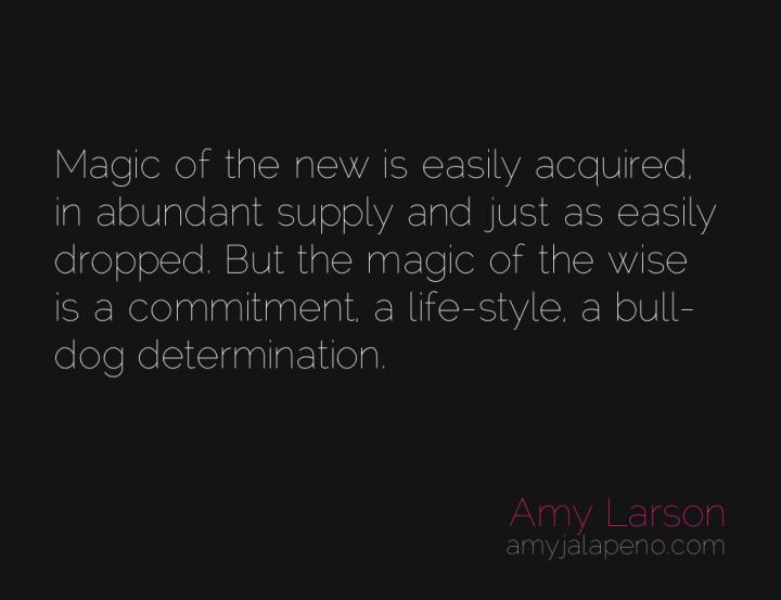 magic-wisdom-determination-relationships-amyjalapeno