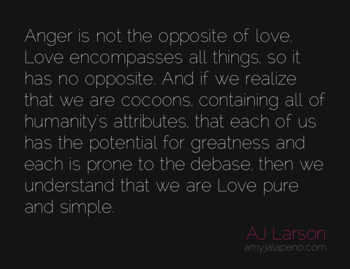 anger-love-opposites-humanity-amyjalapeno
