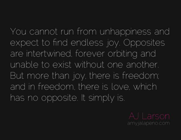 joy-love-freedom-unhappiness-opposites-amyjalapeno
