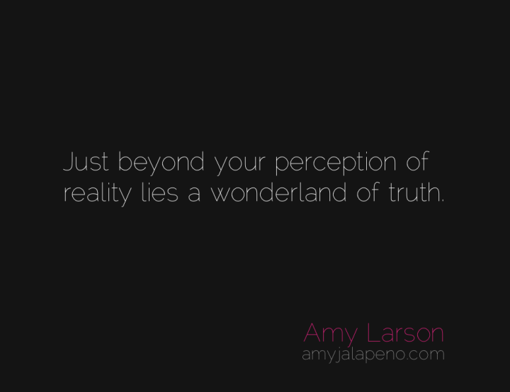 reality-truth-perception-amyjalapeno