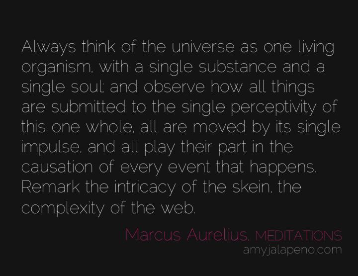 universe-cause-soul-connectivity-marcus-aurelius-meditations-amyjalapeno