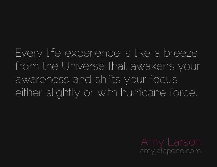awareness-evolutionary-impulse-surrender-focus-amyjalapeno