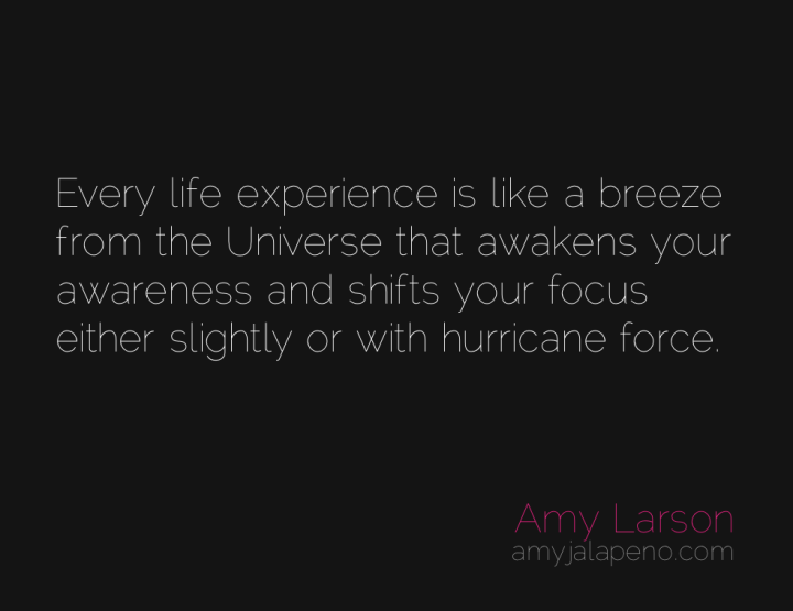 awareness-evolutionary-impulse-surrender-focus-amyjalapeno