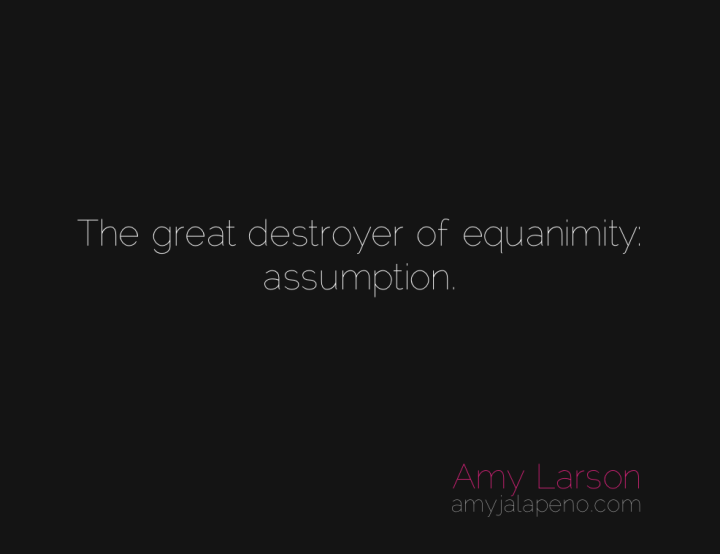 equanimity-assumption-reaction-presence-connection-amyjalapeno
