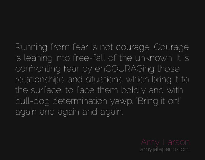 courage-fear-relationships-determination-unknown-amyjalapeno