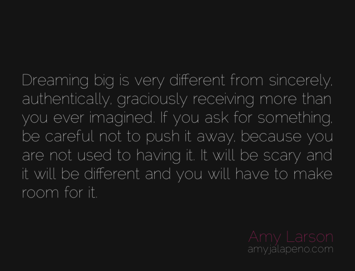 dream-think-big-authenicity-gracious-receiving-ask-fear-abundance-amyjalapeno