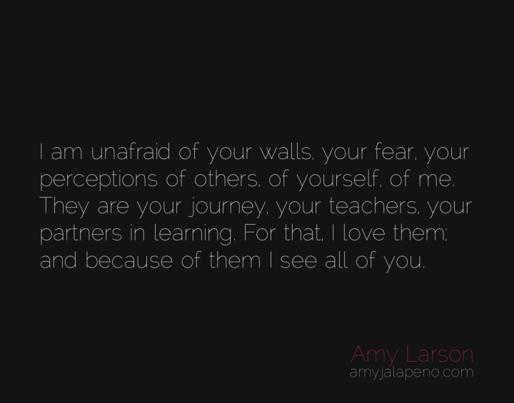 fear-walls-perception-learning-journey-human-teacher-partner-love-amyjalapeno