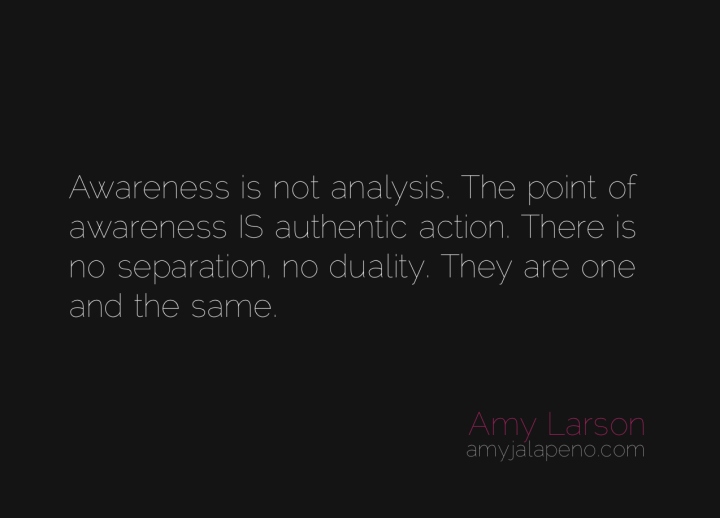 awareness-analysis-authenticity-duality-separation-connection-amyjalapeno