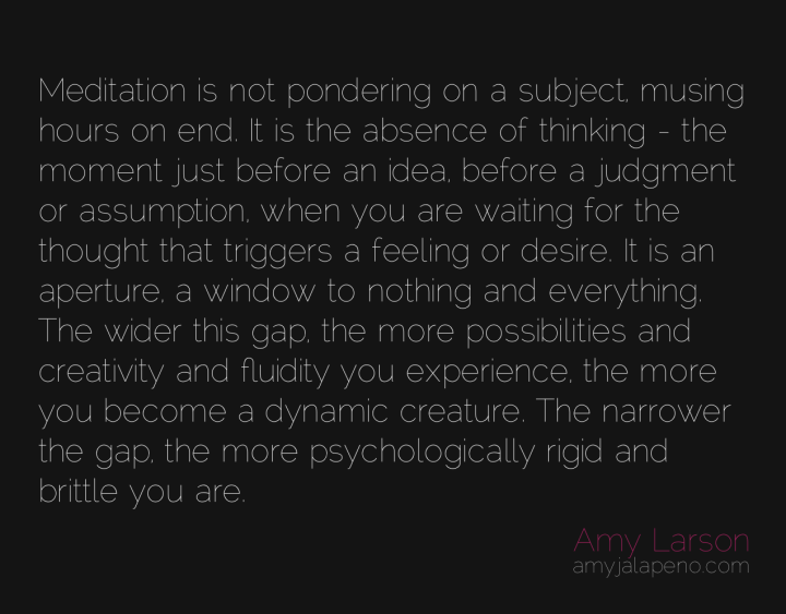 meditation-presence-thought-creativity-feeling-desire-amyjalapeno