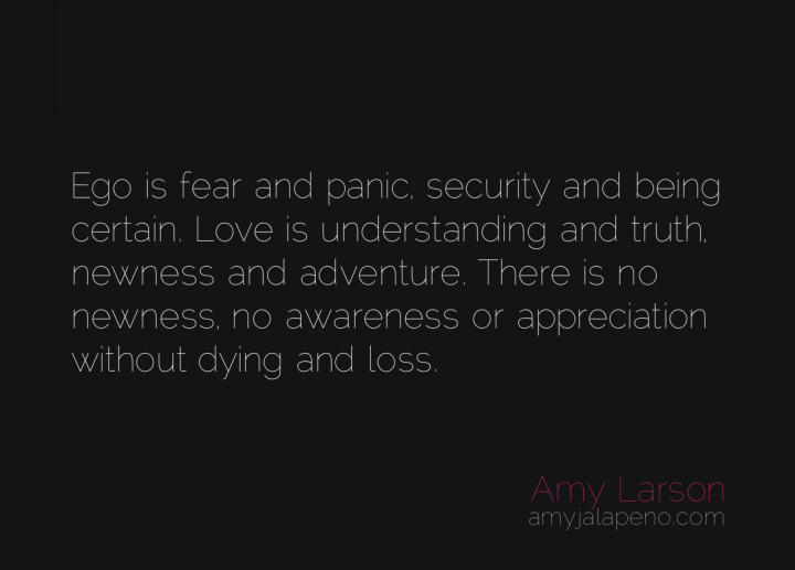 ego-fear-panic-love-truth-understanding-awareness-loss-gratitude-dying-amyjalapeno