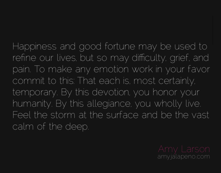 happiness-fortune-joy-grief-pain-difficulty-emotion-temporary-humanity-wholehearted-amyjalapeno