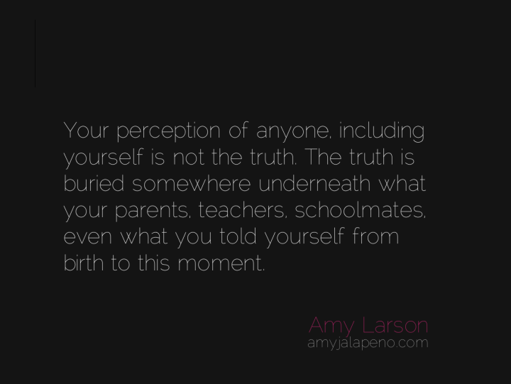 perception-truth-judgment-belief-amyjalapeno