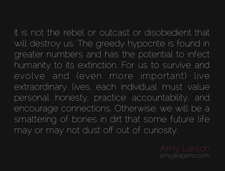 honesty-accountability-rebel-outcast-disobedient-humanity-destruction-connection-amyjalapeno