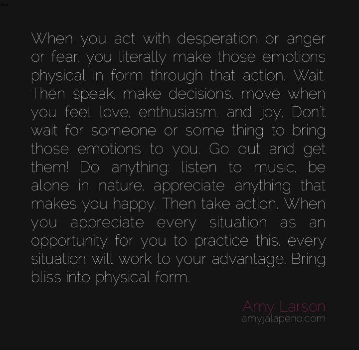 bliss-happy-anger-fear-decisions-choice-love-emotions-appreciation-opportunity-manifestation-amyjalapeno-dailyhotquote