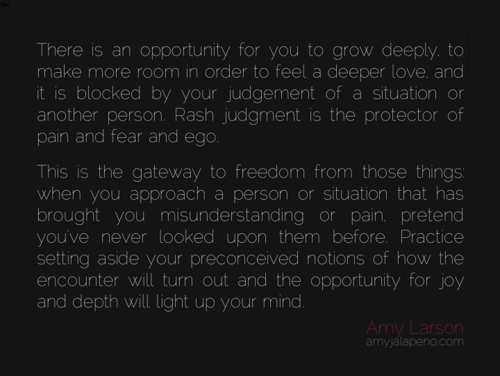 relationships-opportunity-love-fear-judgment-ego-pain-joy-opportunity-amyjalapeno-dailyhotquote