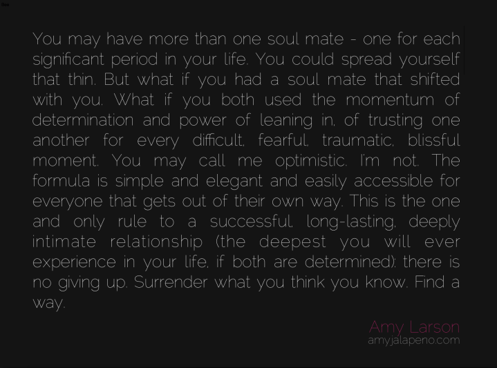 relationships-soul-mate-ego-trust-determination-fear-bliss-optimism-intimacy-surrender-amyjalapeno-dailyhotquote