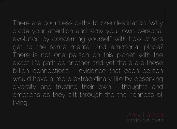 individuality-diversity-appreciation-relatoinships-attention-self-righteous-personal-evolution-emotion-thought-amyjalapeno-dailyhotquote